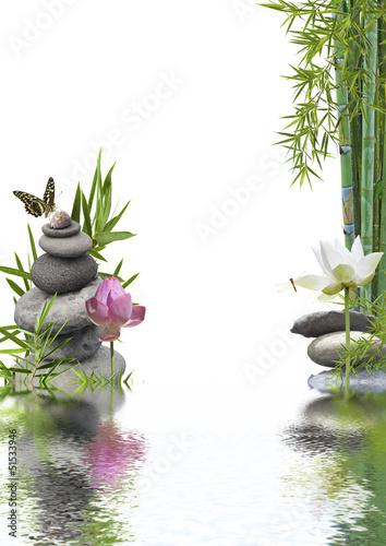 lotos-orientalny-z-bambusem-na-wodzie