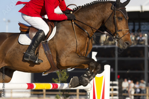 Fotografia Rider and horse in equestrian jumping obstacles on Show course