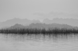 River view - 51619980