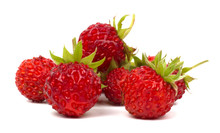 Forest Strawberry Isolated On White