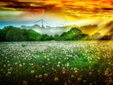 Pole dandelions w wschodzie słońca przed wiatrowymi kołami - 51646746