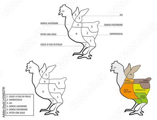 Valokuva  parti del pollo