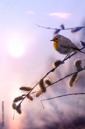 Obraz art beautiful spring morning nature background - fototapety do salonu