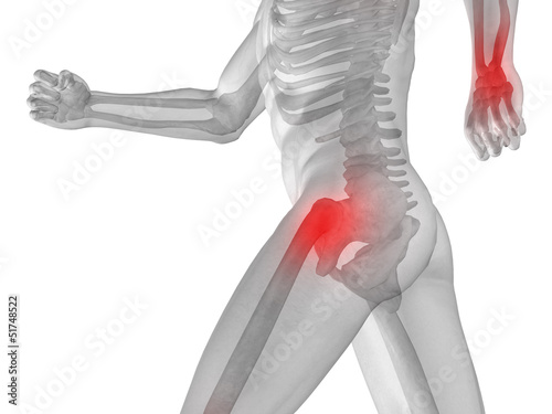 High resolution 3D human for anatomy,medicine and health Wallpaper Mural