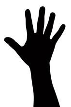 One Hand Vectır