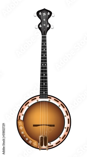 A Beautiful Brown Banjo on White Background Wallpaper Mural