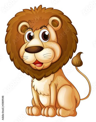 Fototapety, obrazy: A fat lion