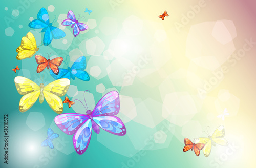 Tuinposter Vlinders Colorful butterflies in a special paper
