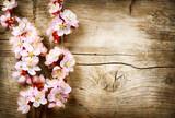 Wahrlich floristischer Hintergrund