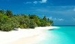 tropischer Strand auf den Malediven