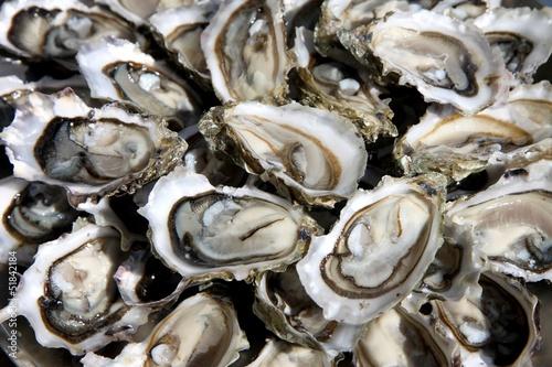 фотография  huîtres ouvertes sur un plat