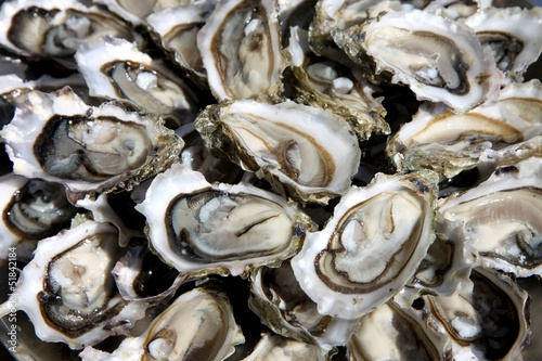 Fotografia, Obraz huîtres ouvertes sur un plat