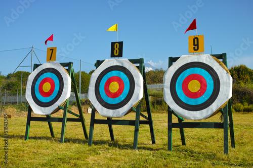 archery targets Canvas Print