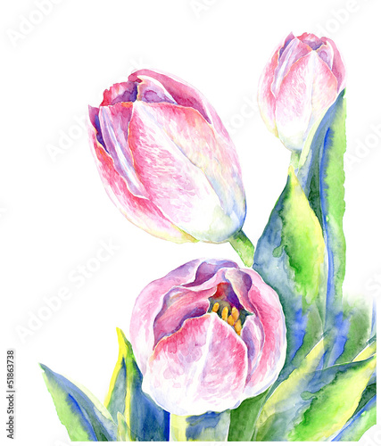Obraz w ramie watercolor tulips
