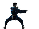 Pozycja karate