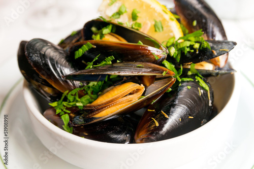 Fotobehang Schaaldieren Mussel with white wine sauce
