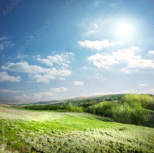 Foto op Aluminium Blauw Spring meadow