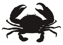 HQ Vector Silhouette Of Crab Isolated On White Background.