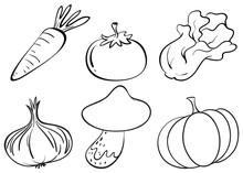 Doodle Designs Of Different Vegetables