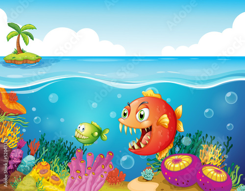 Fotobehang Onderzeeer A sea with colorful coral reefs and fishes