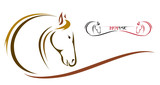 Fototapeta Konie - Vector head of horse on a white background