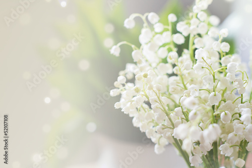 Poster Muguet de mai Lily of the valley