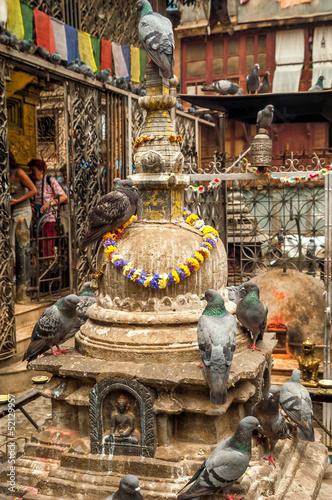 Foto op Plexiglas Artistiek mon. Stupa with Pingeons