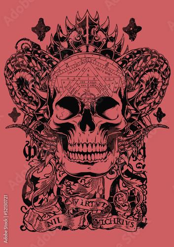 Photo Cobra skull