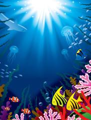 Fototapeta na wymiar Underwater world