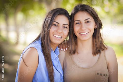 Fotografie, Tablou Two Mixed Race Twin Sisters Portrait