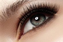 Macro Of Beautiful Eye With Ex...