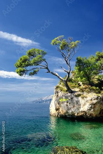Naklejka premium Sławna piękna skała z sosnami w Brela w Chorwacja