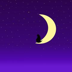 Obraz na płótnie Canvas cat in the moon