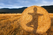Shadow Of A Girl Doing Yoga On The Bale Of Hay