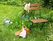 canvas print picture - Ausruhen im Garten