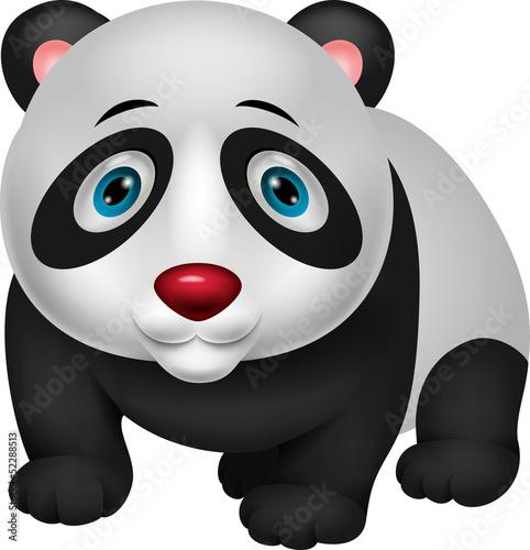 mala-kreskowkowa-panda
