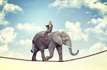 Caucasian Businesswoman Gets Carried Away By A Big Elephant Walking On A Rope. Concept Of Security And Trust.