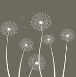 Decoration with dandelion.