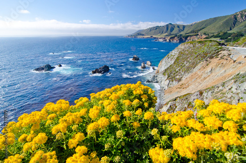 Tuinposter Meloen Scenic Vista on California State Route 1