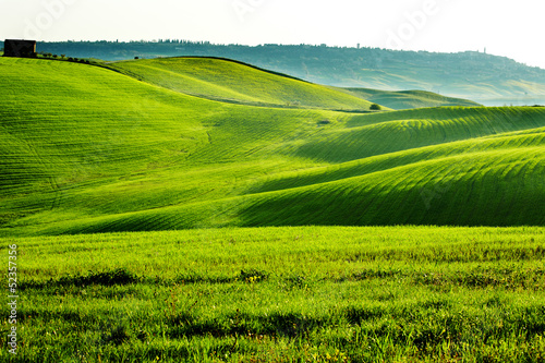 Photo  Countryside, San Quirico d`Orcia , Tuscany, Italy