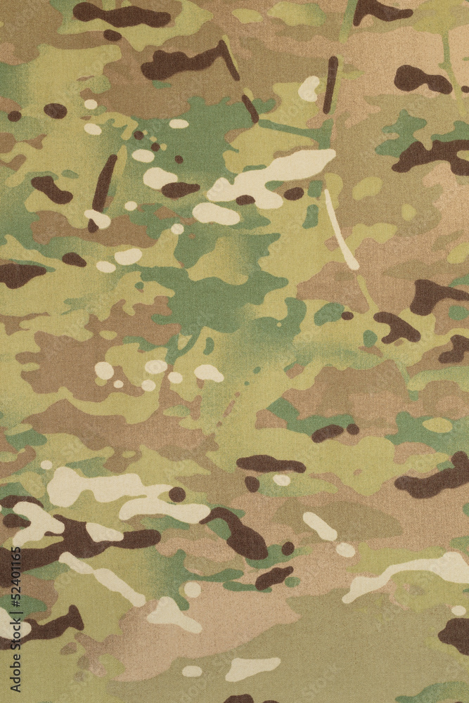 Photo Art Print Armed Force Multicam Camouflage Fabric