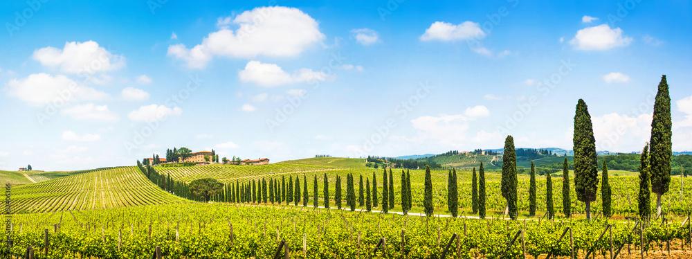 Beautiful landscape with vineyard, Chianti, Tuscany, Italy