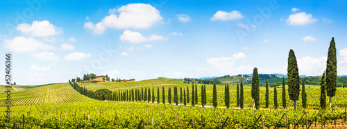Foto op Aluminium Wijngaard Beautiful landscape with vineyard, Chianti, Tuscany, Italy