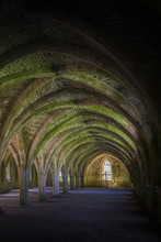 Fountains Abbey  Cellarium