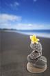 empilement de galets sur plage