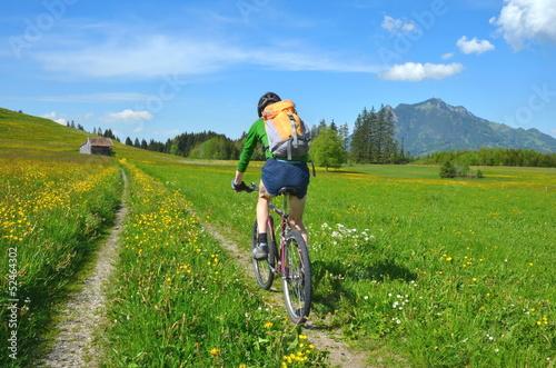 Poster Fietsen Radfahren, Berge, Wiesen