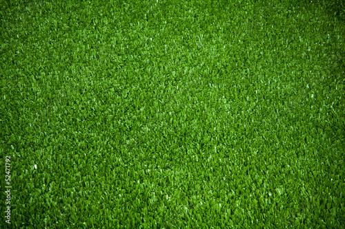 Foto op Plexiglas Groene Green grass background texture.