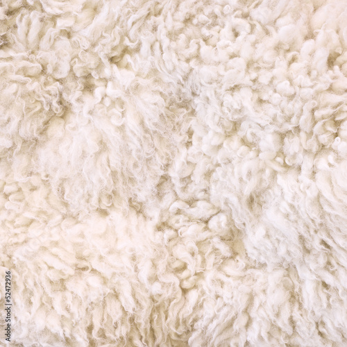 White fur as abstract background Canvas Print