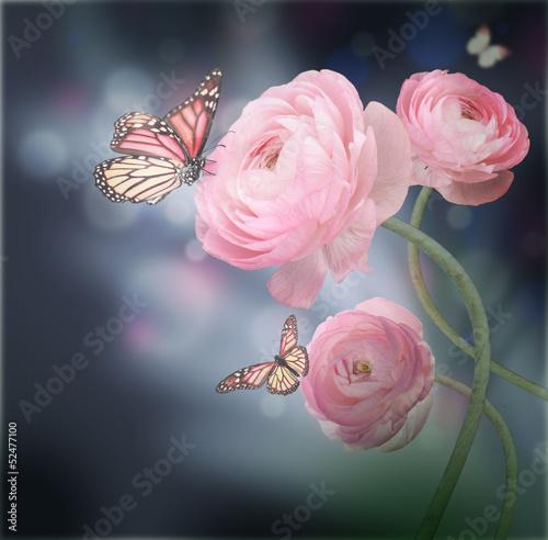 bukiet-roz-z-motylem-na-ciemnym-tle