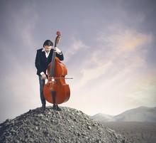 Musician Playing Bass